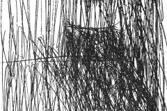 Interno-acquaforte-2017-incisioni-sezione-3-1