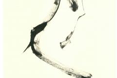Inchiostro su carta 40x30 cm
